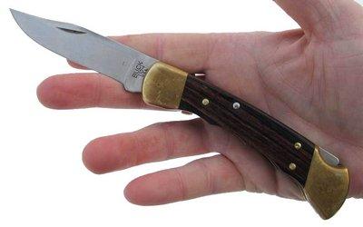 Buck 110 hand